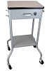 Allied Healthcare Gomco Mobile Suction Pump Stand 01-10-0814